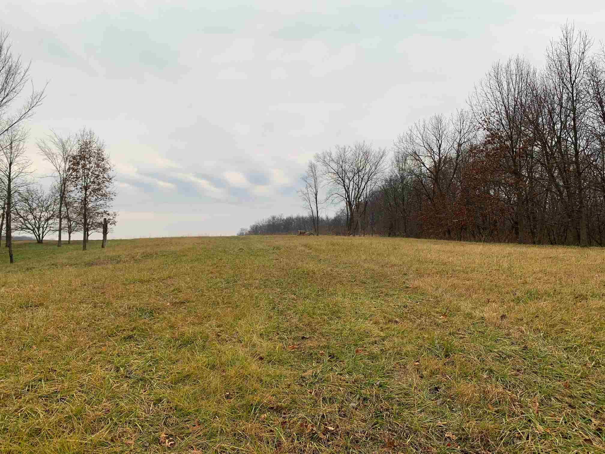 Lot 190 SOUTH GAP Property Photo - Danvers, IL real estate listing