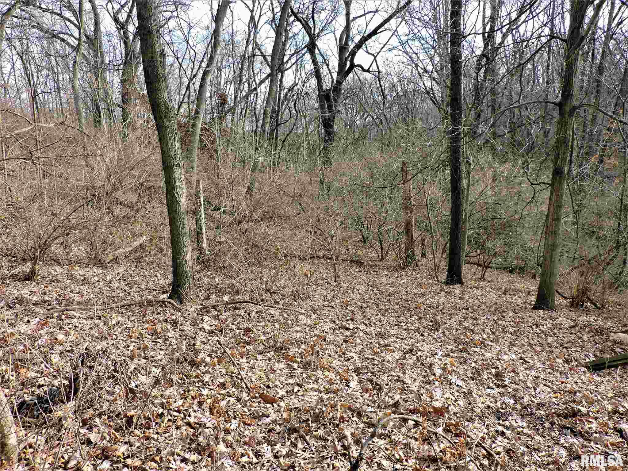 00 N THOUSAND DOLLAR Property Photo - Brimfield, IL real estate listing