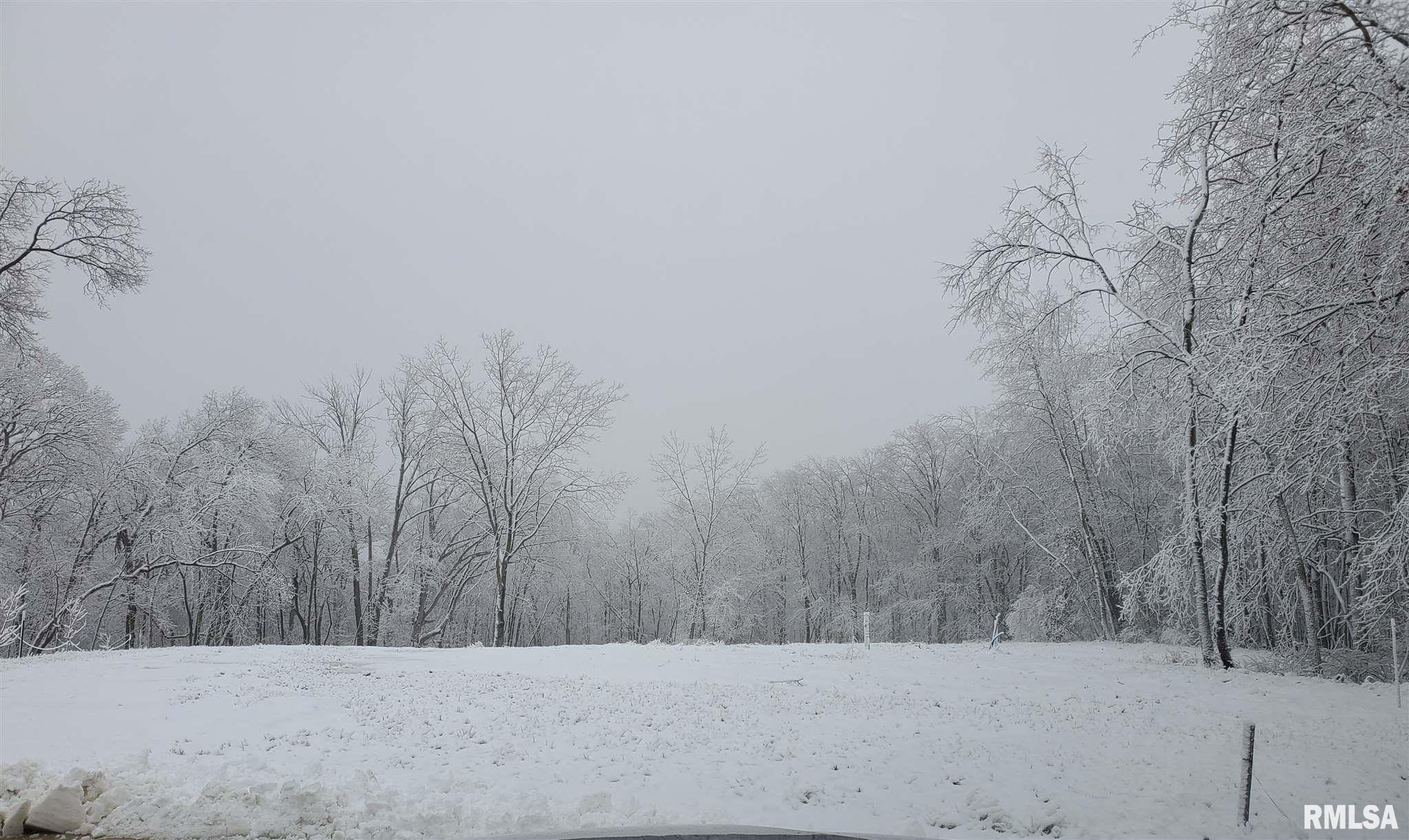 124 ROSEMARY Property Photo - Germantown Hills, IL real estate listing