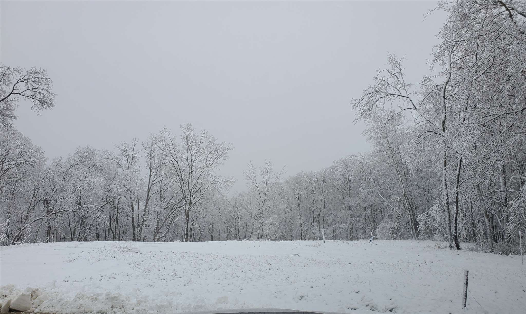 115 ROSEMARY Property Photo - Germantown Hills, IL real estate listing
