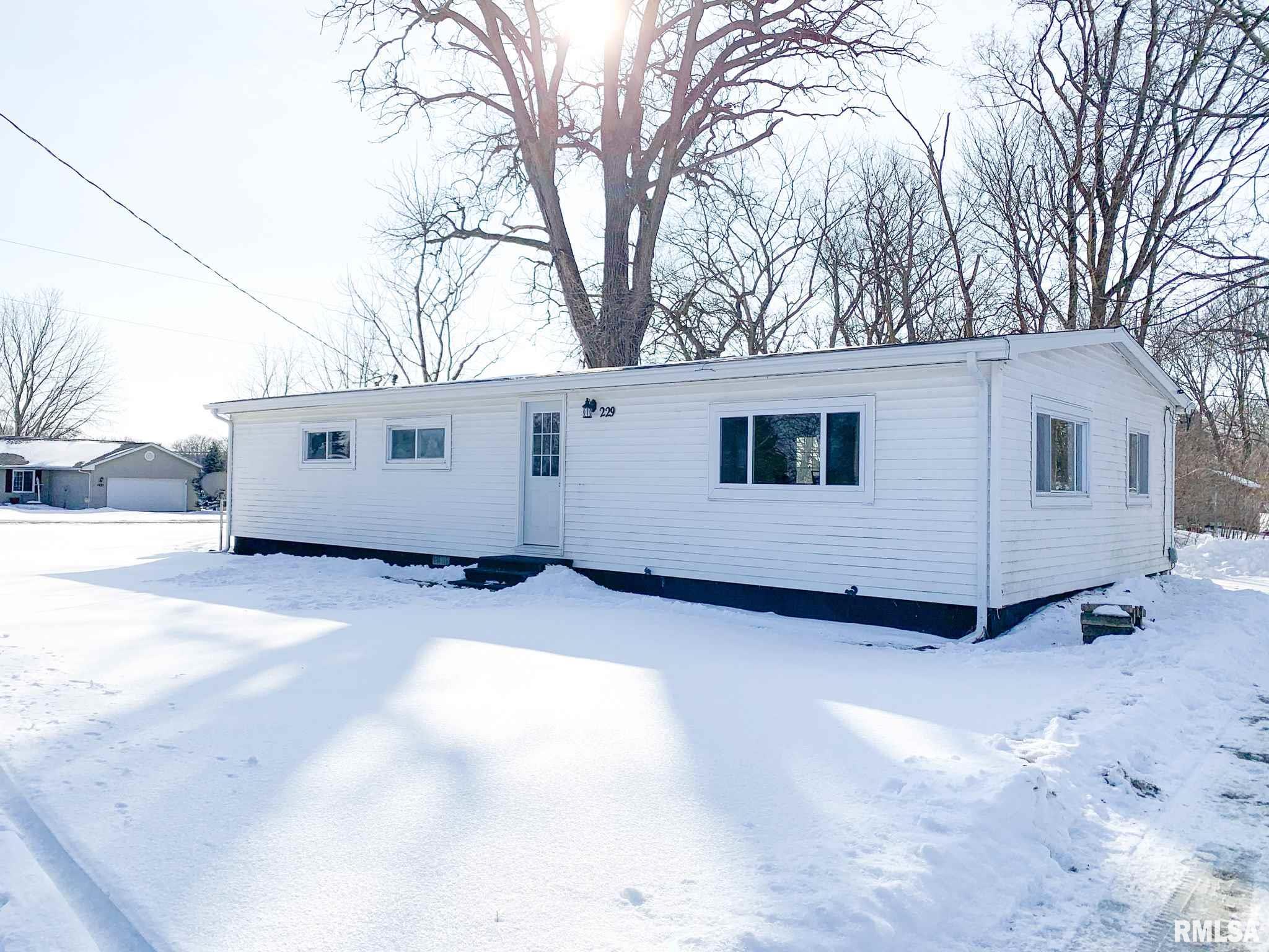 229 S WASHINGTON Property Photo - Brimfield, IL real estate listing
