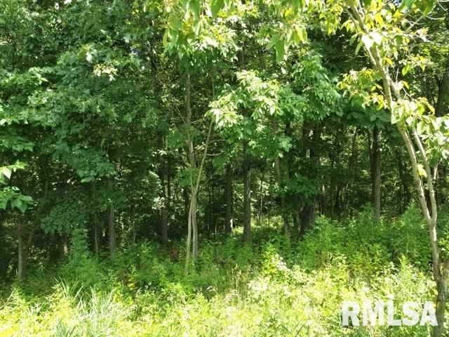 1819 TANGLEWOOD Property Photo - Varna, IL real estate listing