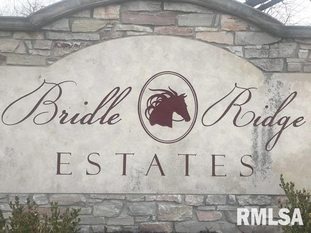 25 Stallion Way Property Photo - Goodfield, IL real estate listing
