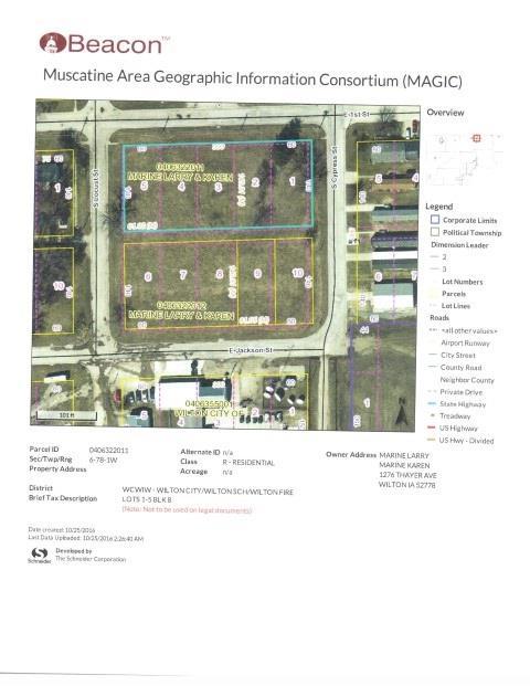 Lot 2 E 1ST Property Photo - Wilton, IA real estate listing