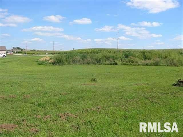 1108 2ND Property Photo - Orion, IL real estate listing