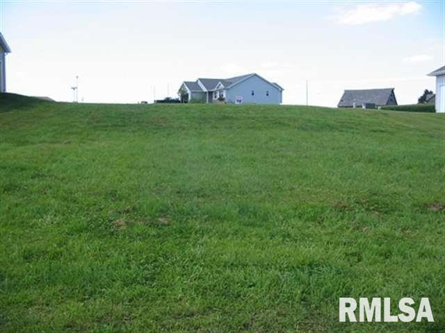 1100 2ND Property Photo - Orion, IL real estate listing