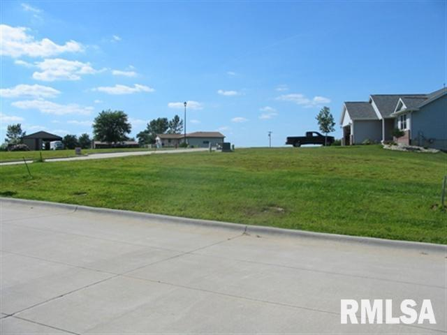 1004 2ND Property Photo - Orion, IL real estate listing