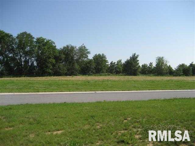 3905 229TH Property Photo - Port Byron, IL real estate listing