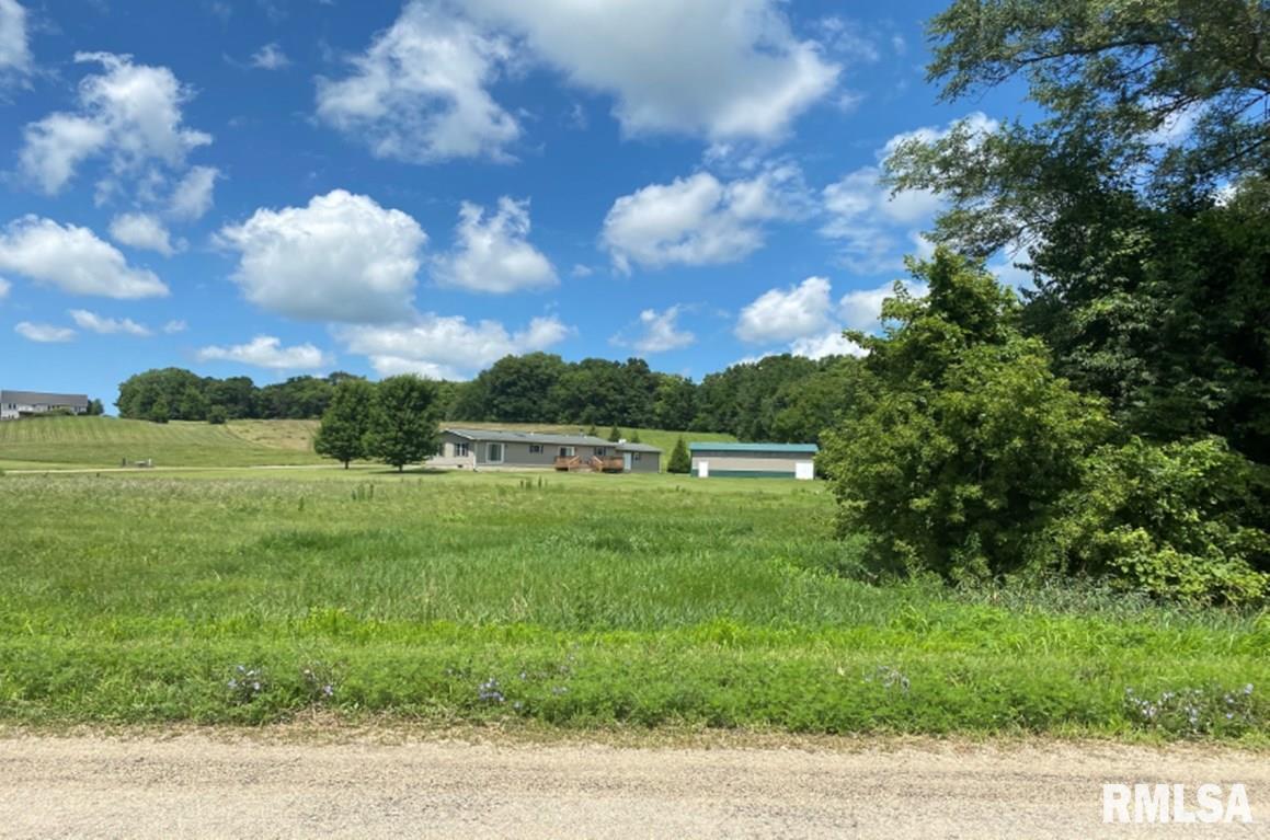 Lot 21 BURNS Property Photo - Fenton, IL real estate listing