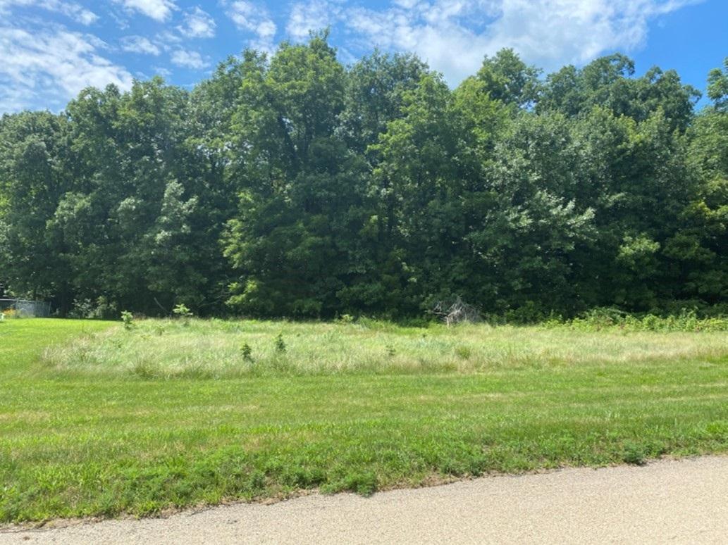 Lot 47 DEERE RUN Property Photo - Fenton, IL real estate listing