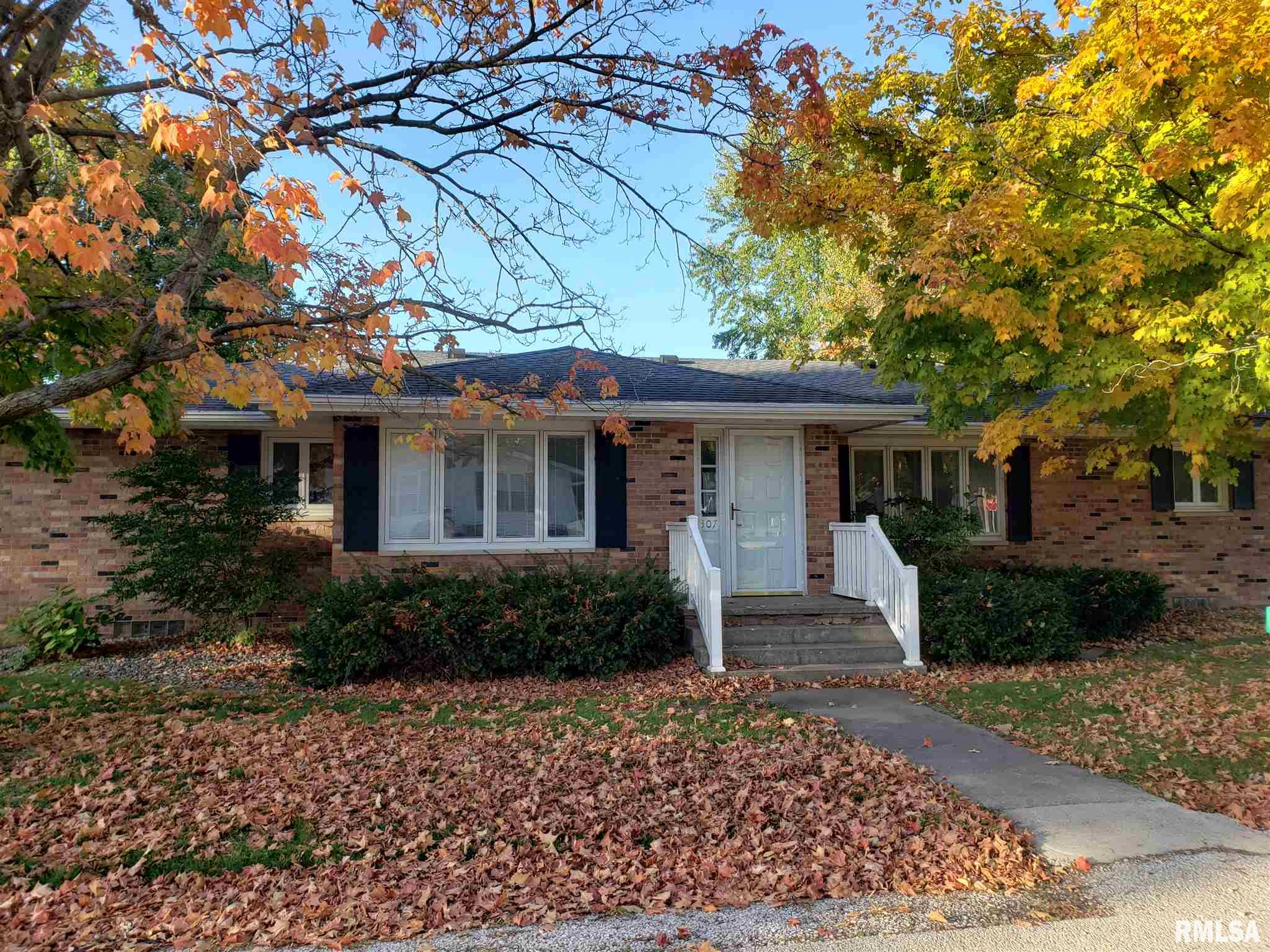 307 E B Property Photo - Alpha, IL real estate listing