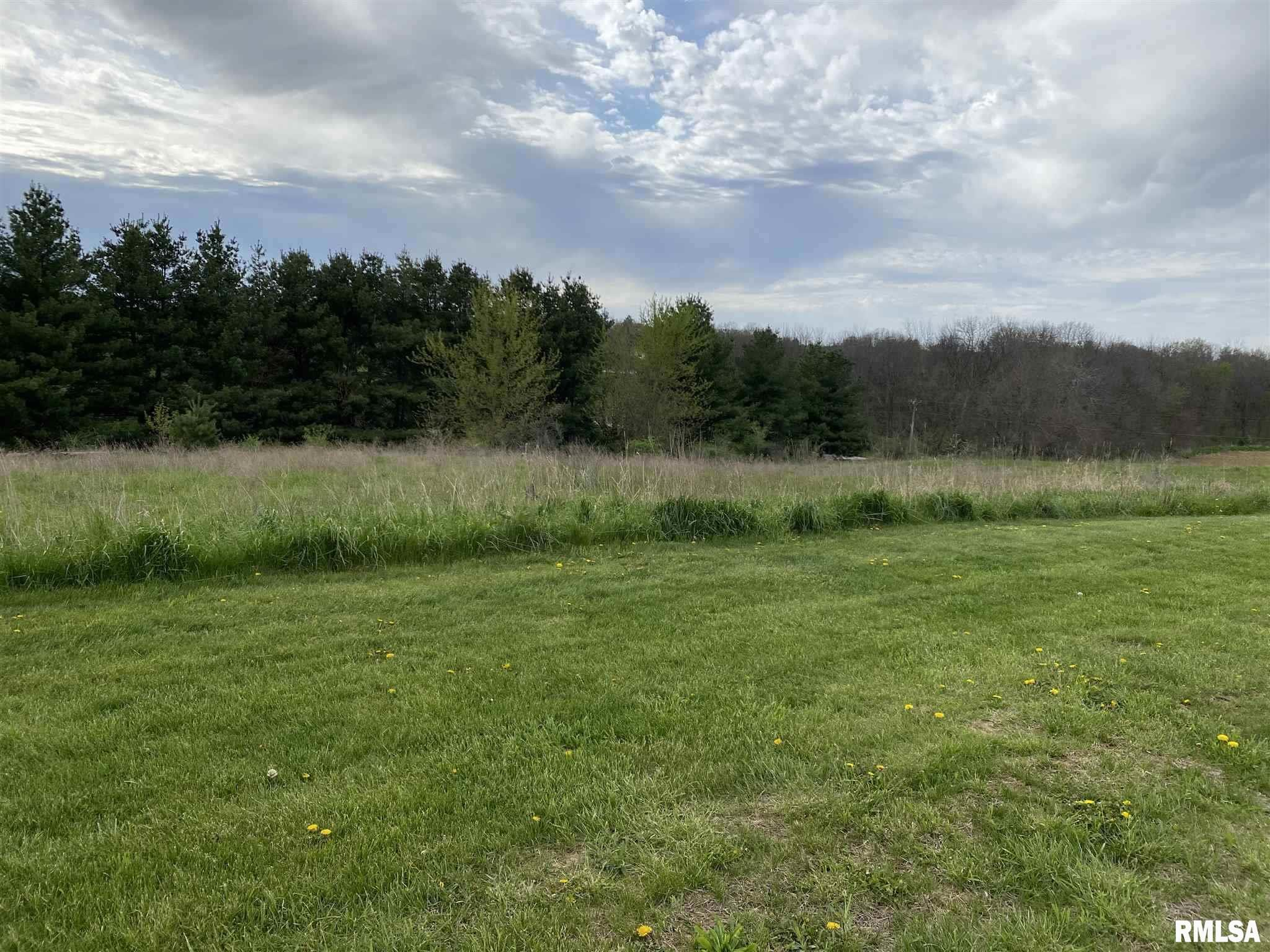 Lot 1 N 1100th Property Photo - Lynn Center, IL real estate listing