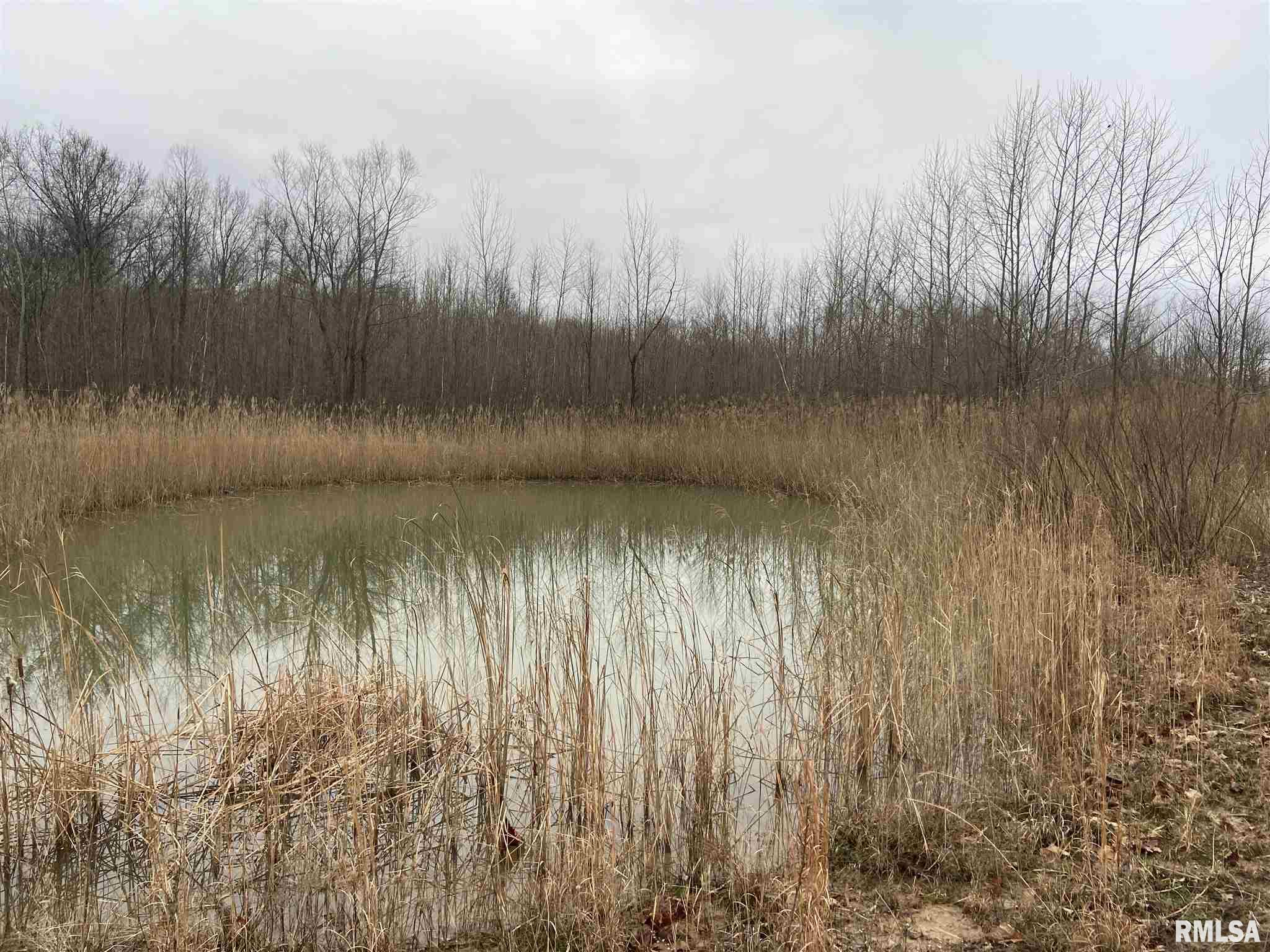 17980 Four Mile Property Photo - West Frankfort, IL real estate listing