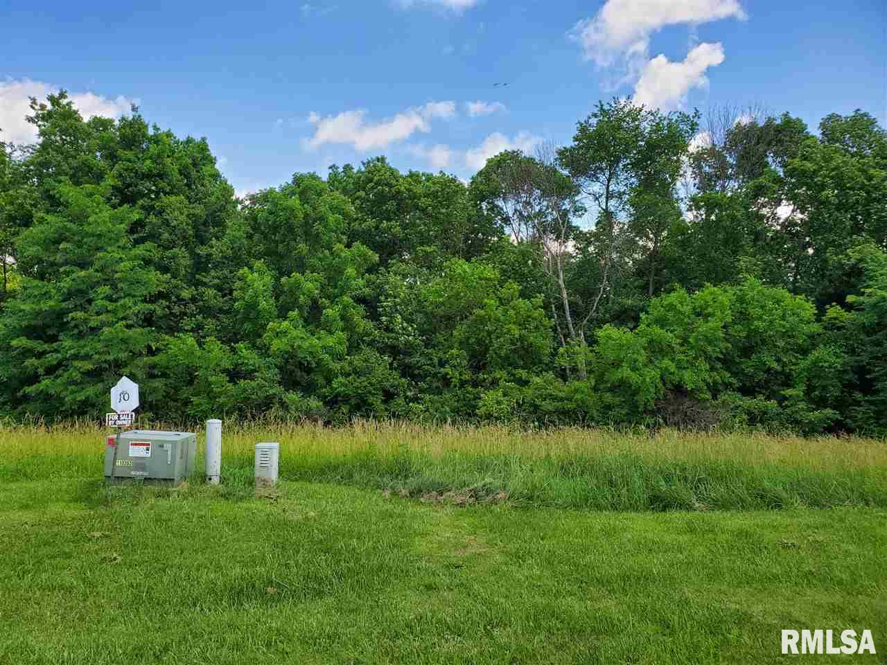 TBD Lot #10 POWELL Property Photo - Savanna, IL real estate listing