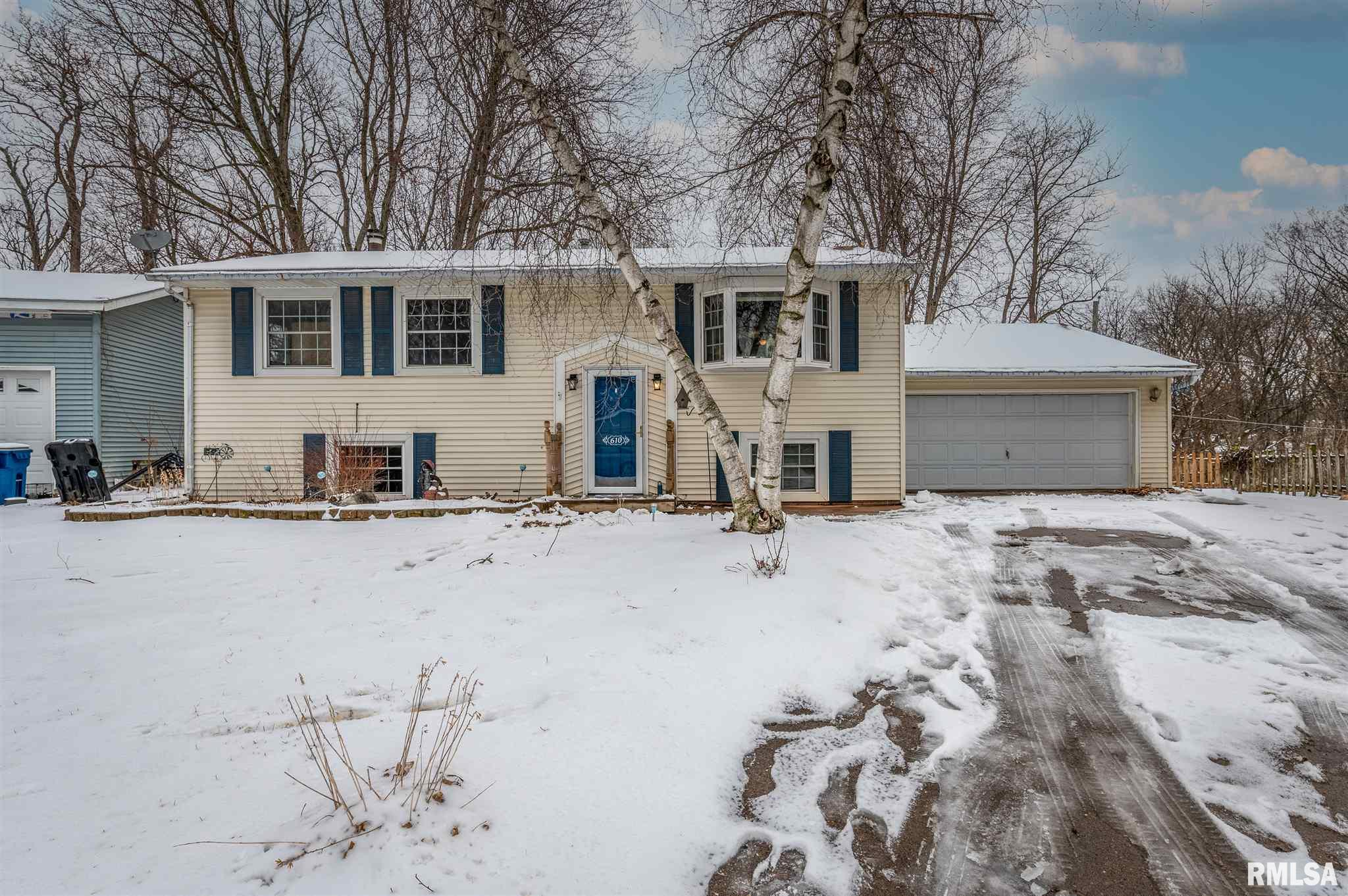 610 CHERRY Property Photo - Port Byron, IL real estate listing