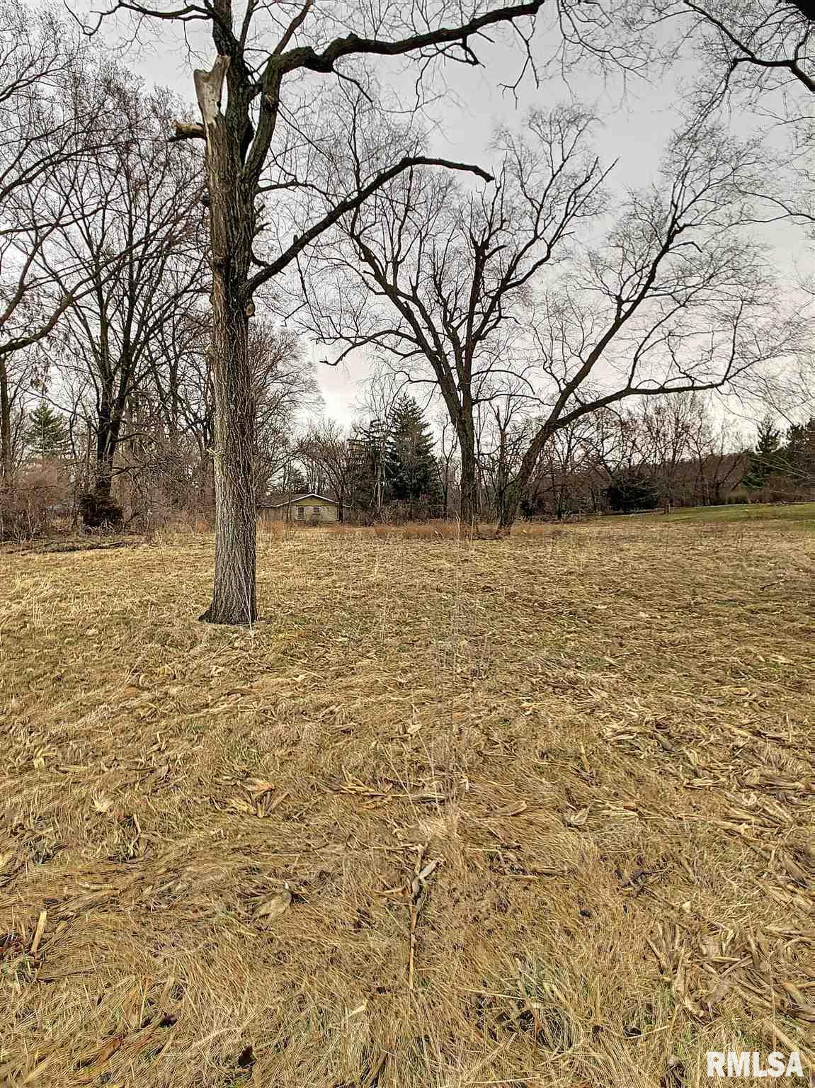 Lot 2 121ST Property Photo - Andalusia, IL real estate listing