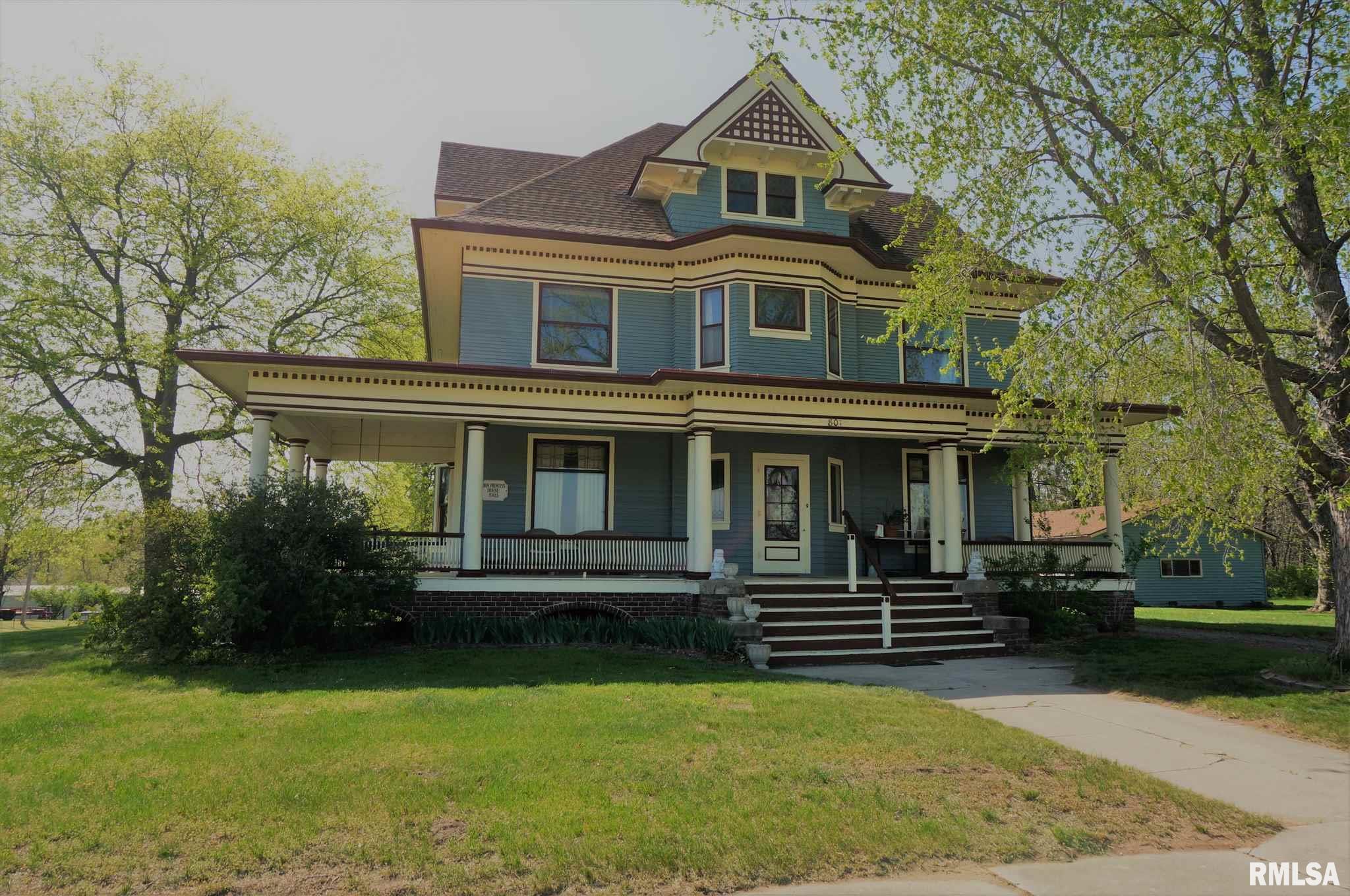 801 NORTH Property Photo - New Boston, IL real estate listing