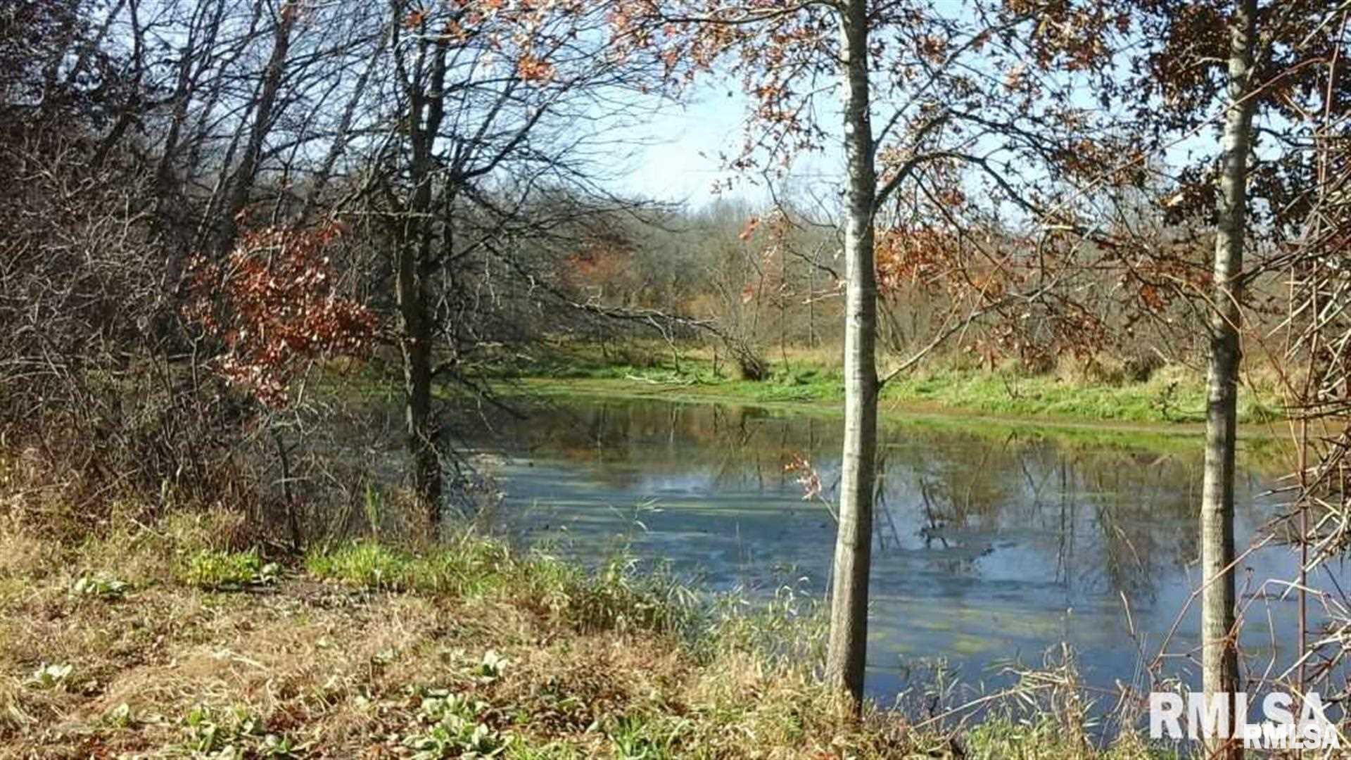 1560 257TH Property Photo - Calamus, IA real estate listing