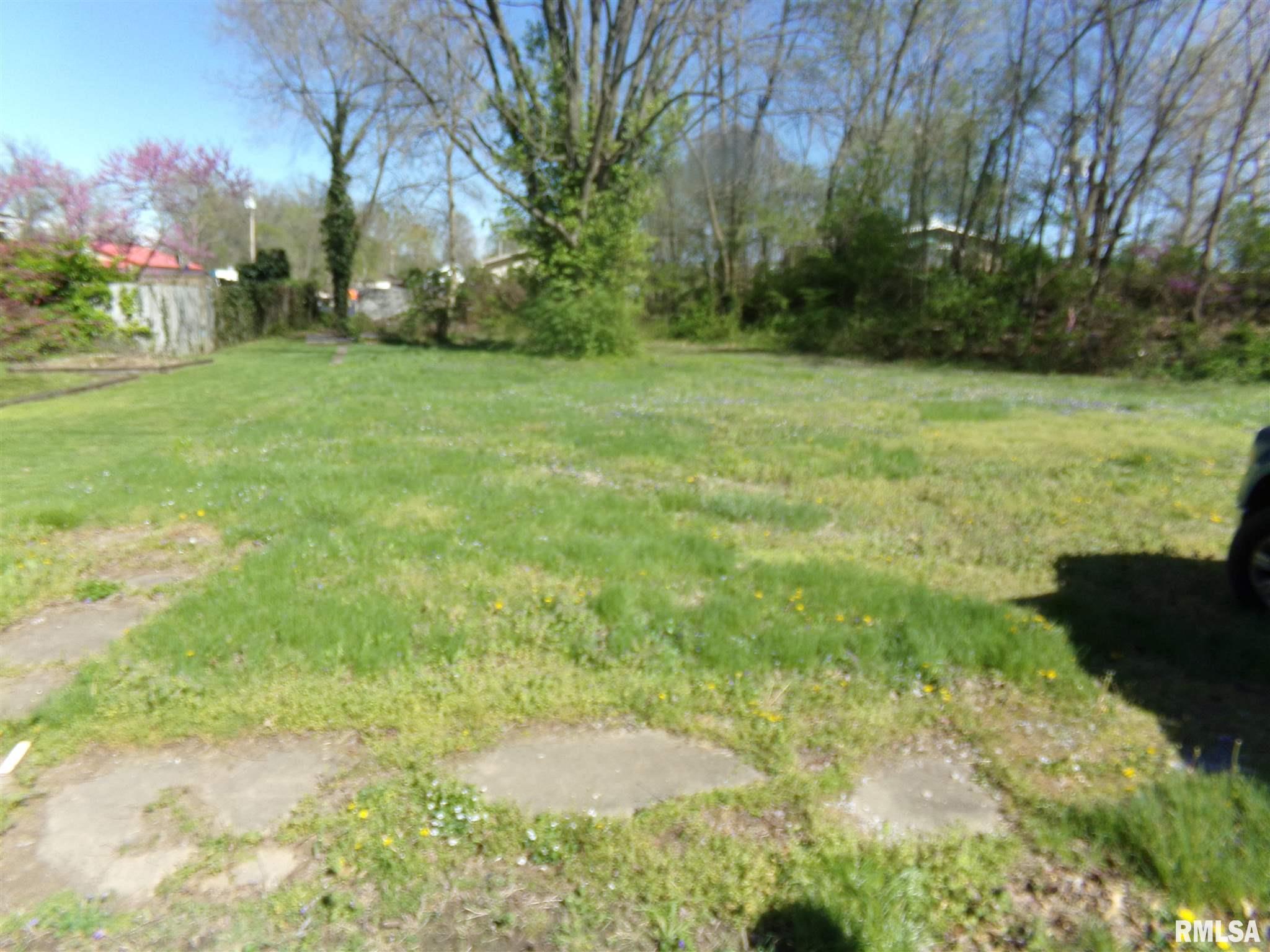 514 S DOUGLAS Property Photo - West Frankfort, IL real estate listing