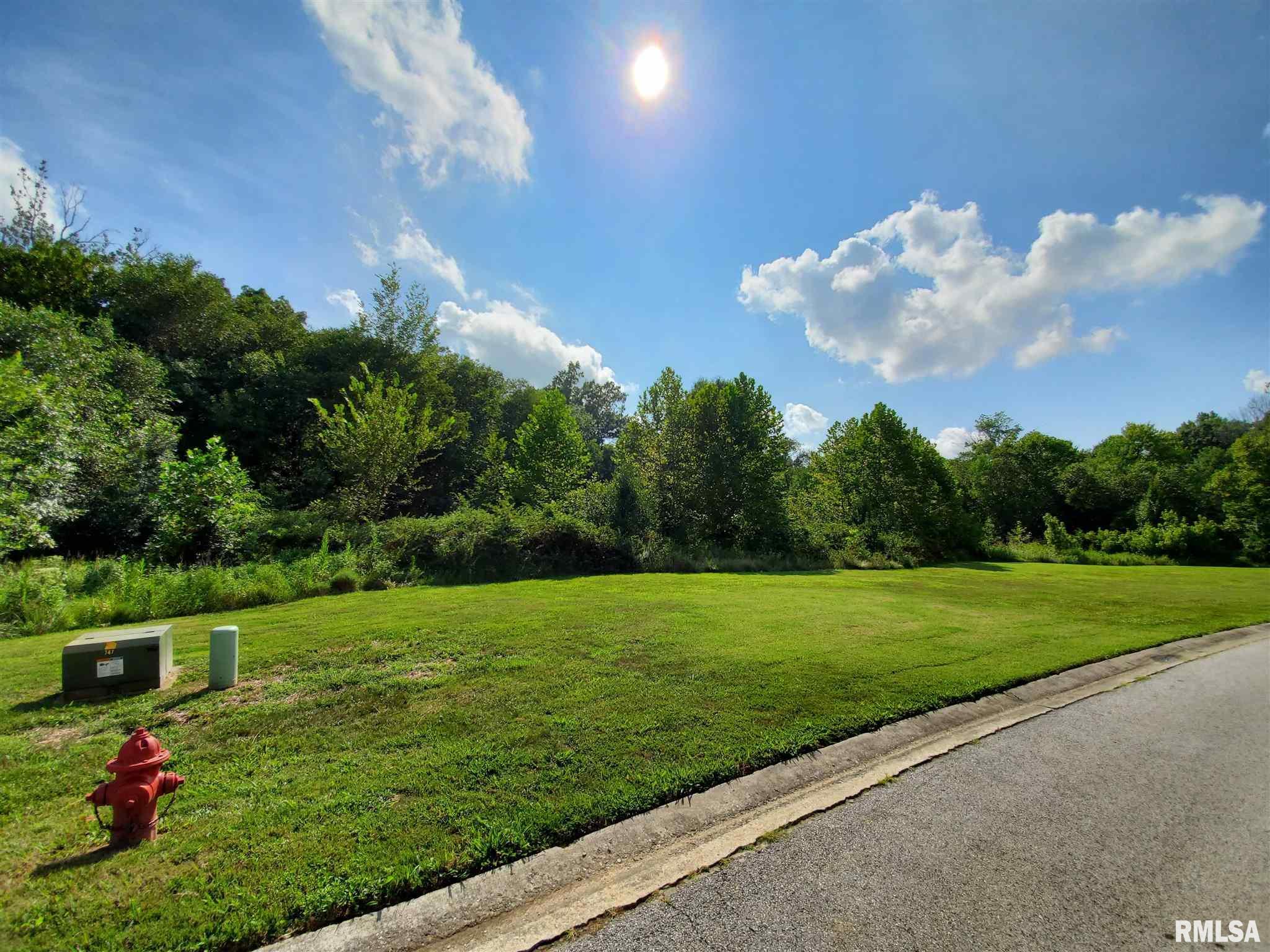 0000 W Meadow Lane Property Photo 1