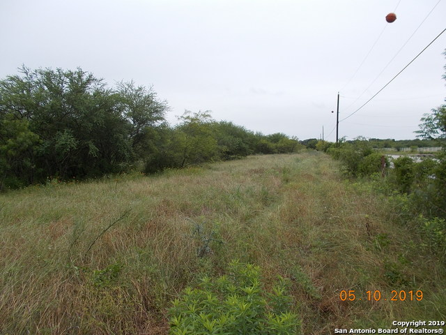 11025 And 11278 Lower Seguin Road Property Photo 1
