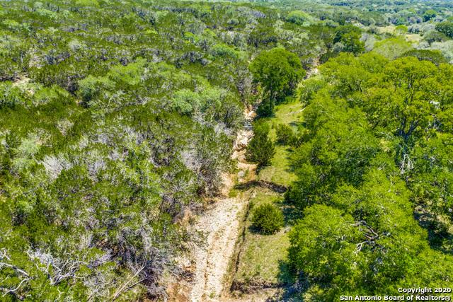 163 Wyatt Ranch Rd Property Photo 4