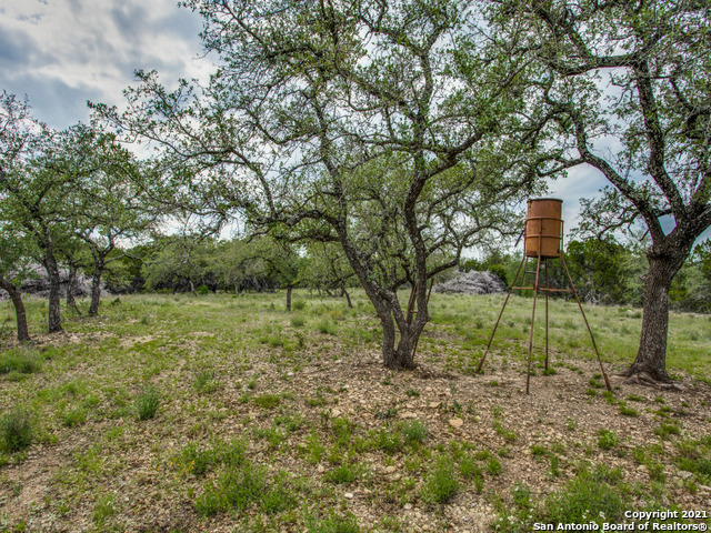 706 Paleface Ranch Rd South Property Photo 20