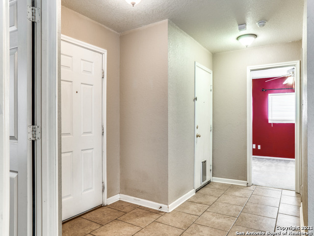9031 Sycamore Cove Property Photo 17