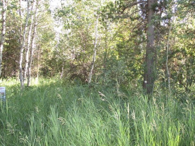 4376 Granite Ridge Property Photo - ASHTON, ID real estate listing