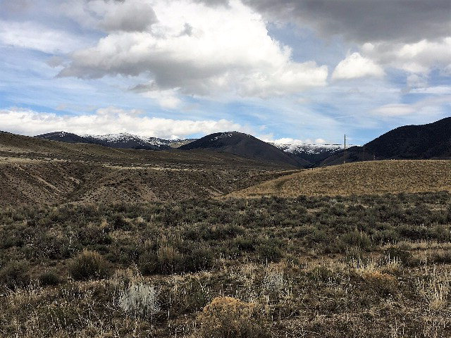 TBD Peterson Creek Road Property Photo - LEADORE, ID real estate listing