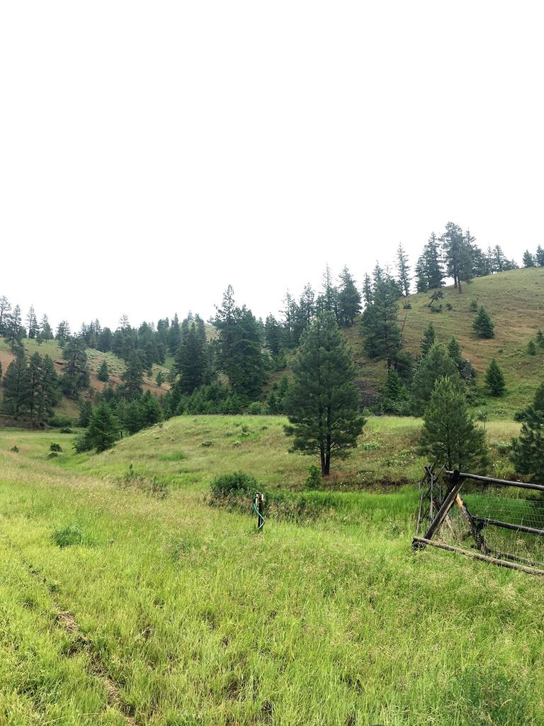 TBD Dry Gulch Road Property Photo - NORTH FORK, ID real estate listing