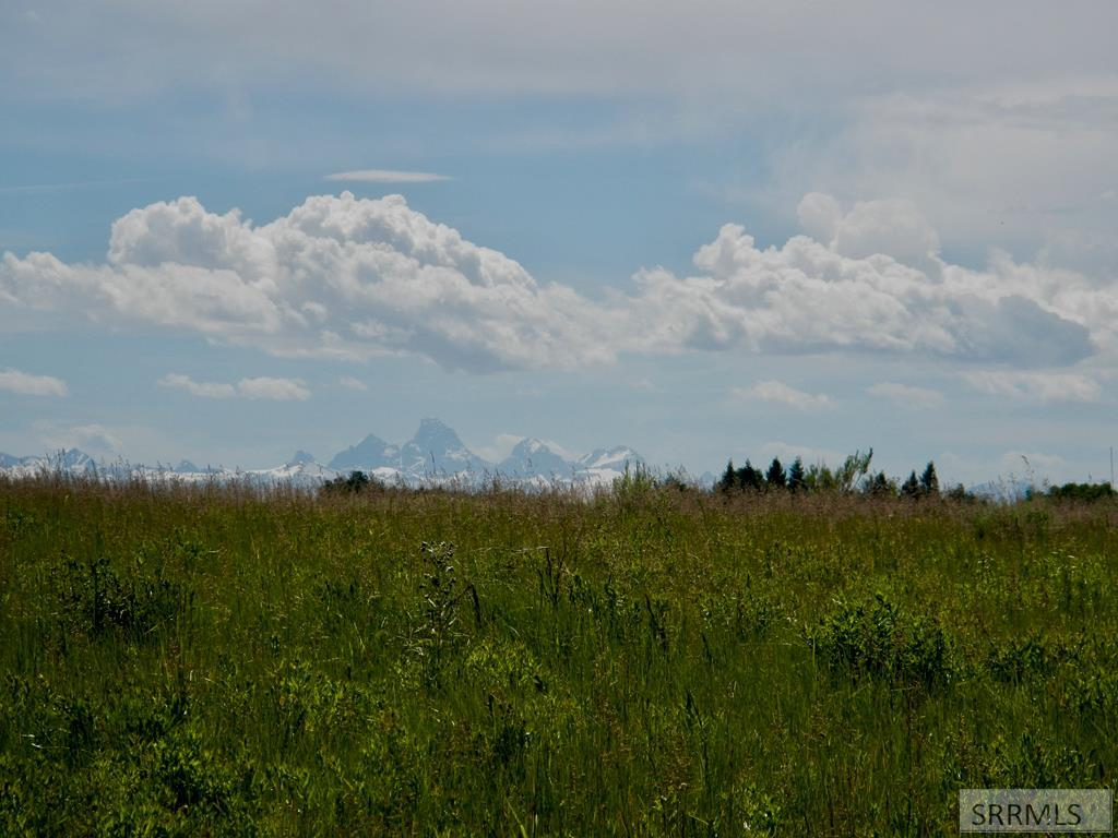 1585 Sharptail Road Property Photo
