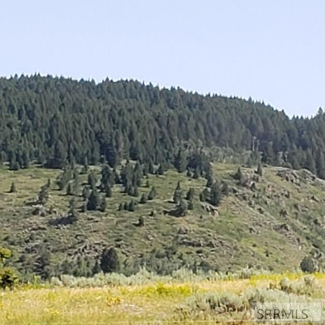 1595 Sharptail Road Property Photo