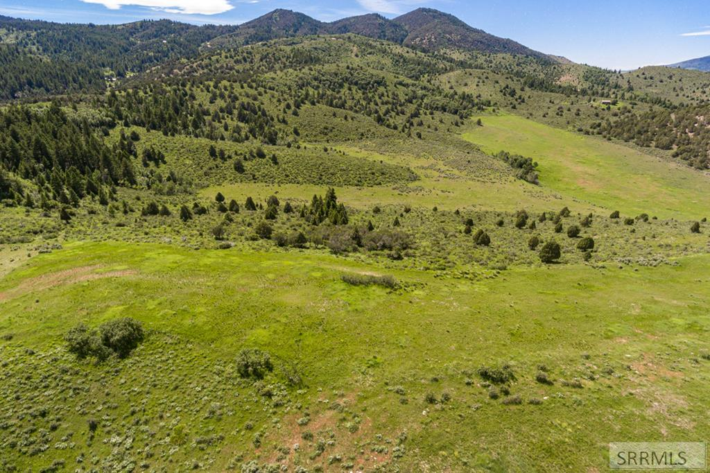 Parcel C Dempsey Creek Road Property Photo - LAVA HOT SPRINGS, ID real estate listing