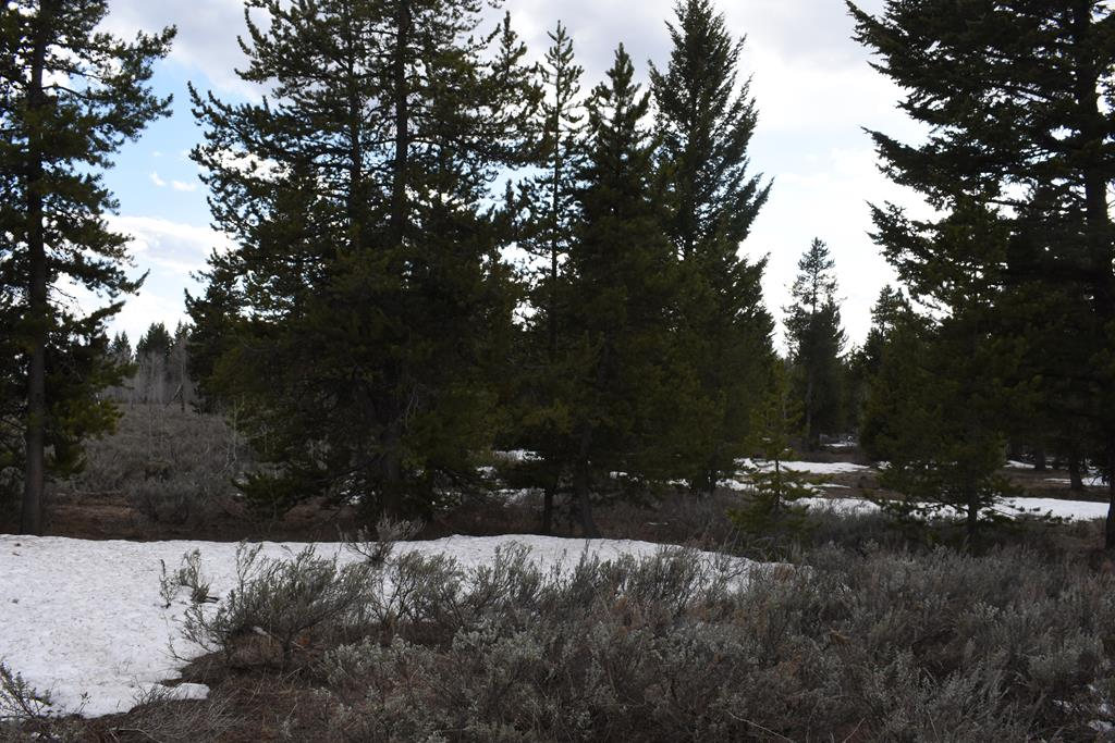 2840 Morning Dew Drive Property Photo - ISLAND PARK, ID real estate listing