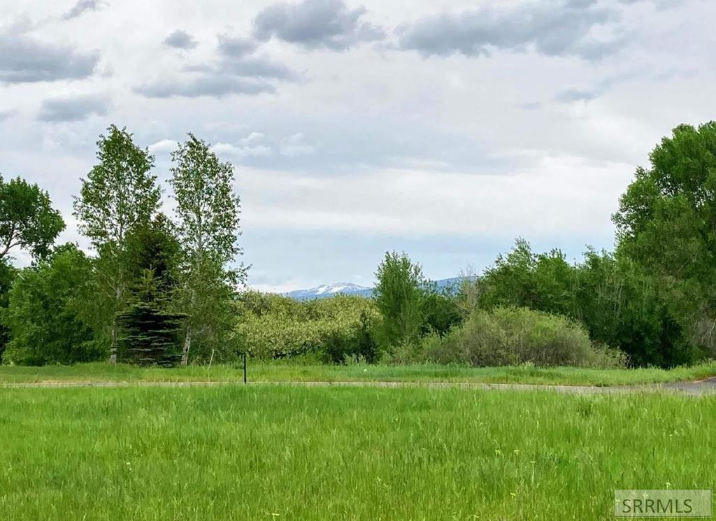 8166 Brown Trout Bend Property Photo - VICTOR, ID real estate listing