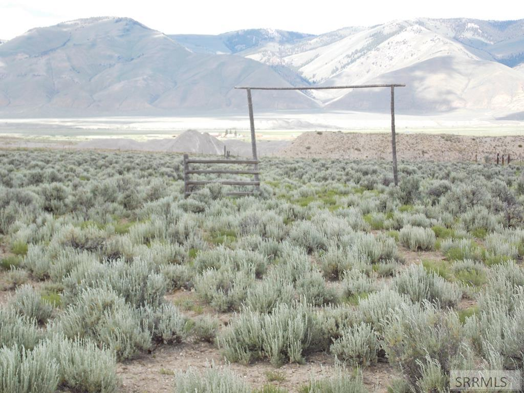 TBD Sutton Lane Property Photo - LEADORE, ID real estate listing