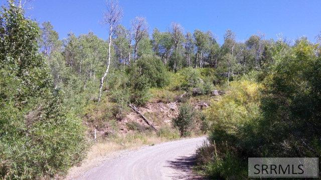 1850 Cedar Ridge Road Property Photo