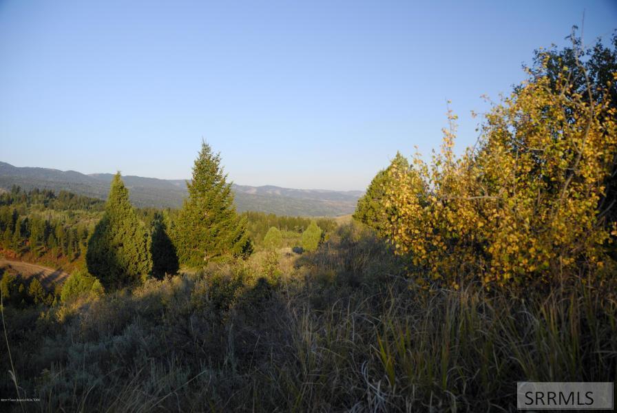 L44&45b1 Cutthroat Run Property Photo