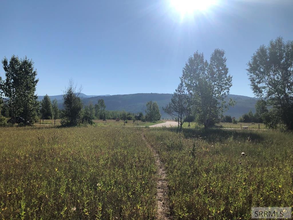 7308 Lupine Lane Property Photo - VICTOR, ID real estate listing