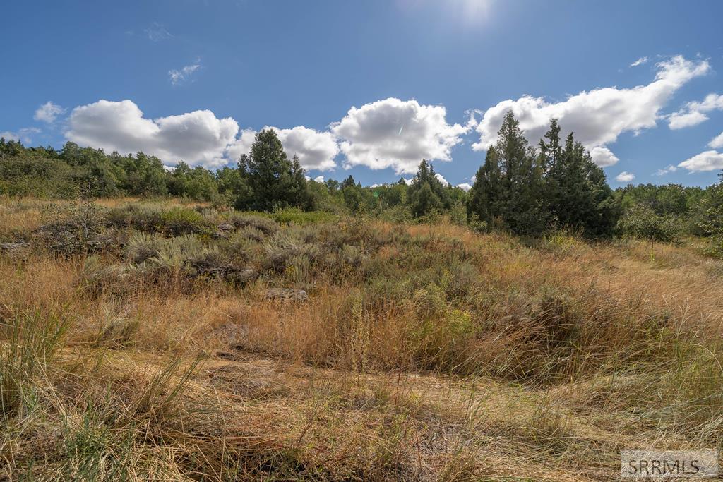 1696 Mountain Laurel Drive Property Photo