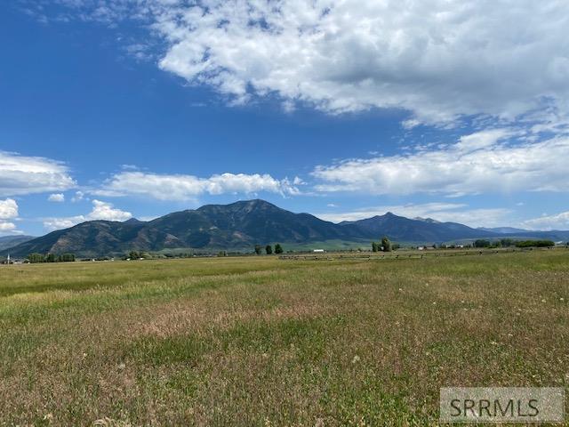 Swan Valley Real Estate Listings Main Image