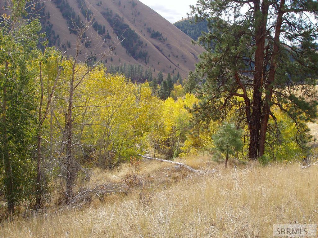 999 Chukar Ridge Lane #Magpi Property Photo
