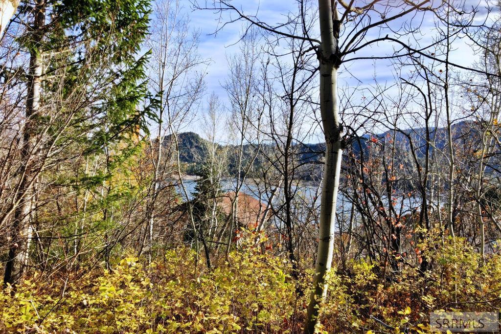 Lot3Blk1 Pine Run Property Photo - PALISADES, ID real estate listing