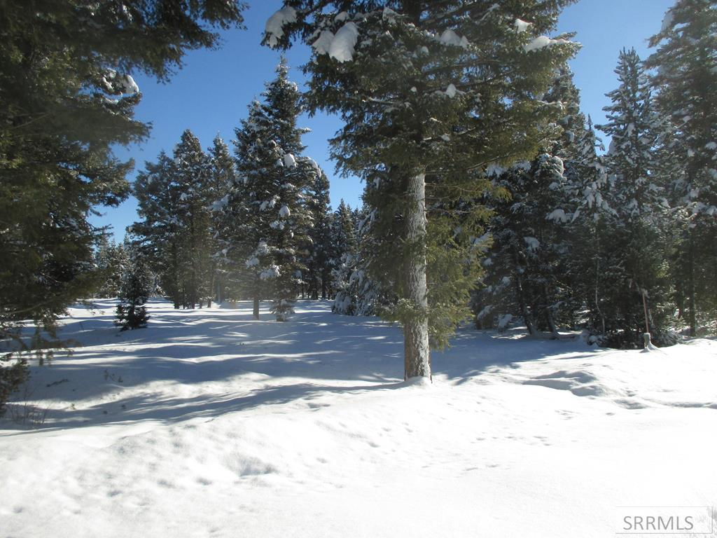 4070 Sweet Alyssa Lane Property Photo