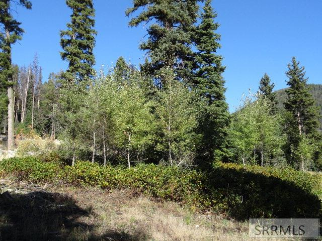 Lot 1B Kokopelli Drive Property Photo - GIBBONSVILLE, ID real estate listing