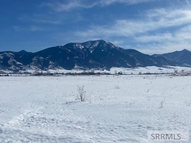 TBD Green Wing Drive Property Photo - SWAN VALLEY, ID real estate listing