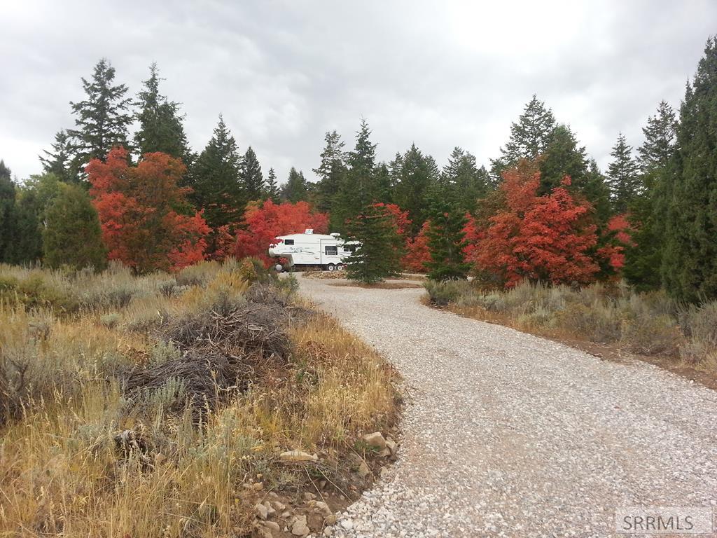 Lot 59 Squaw Creek Road Property Photo - BANCROFT, ID real estate listing