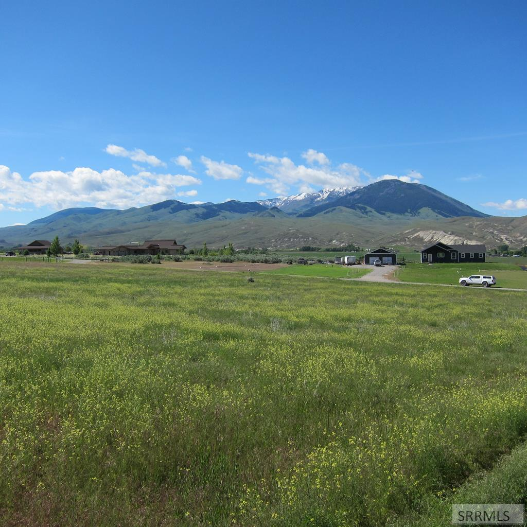 TBD Country Living Lane Property Photo - SALMON, ID real estate listing