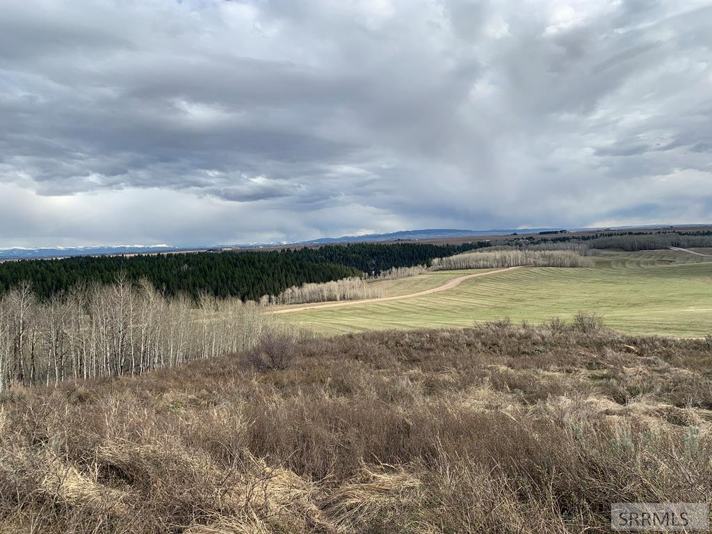 1649 Renegade Fly Drive Property Photo - ASHTON, ID real estate listing